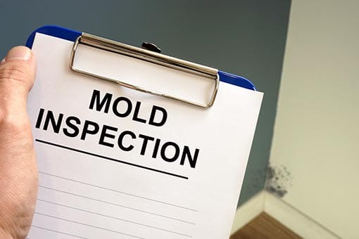 Mold Inspection Professionals