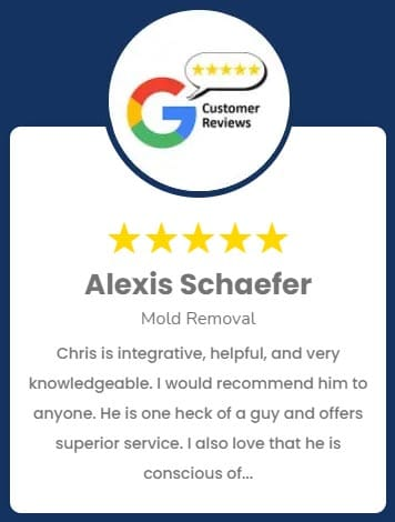 Alexis Schaefer Mold Removal Review