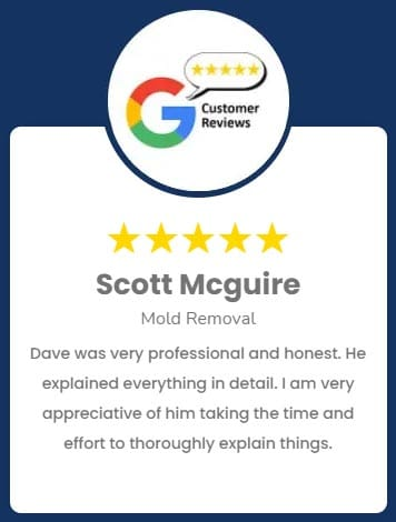 Scott Mcguire Mold Removal Review